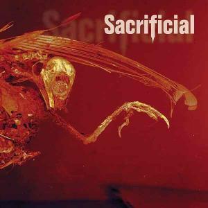 SACRIFICIAL - AUTOHATE CD