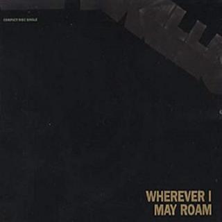 METALLICA - WHEREVER I MAY ROAM (U.K. EDITION) CD'S